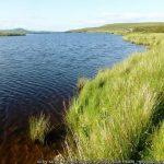 Pen-Ffordd-Goch Pond (Keeper's Pond)